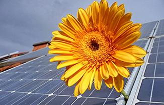 energies-renouvelables-alenya-perpignan
